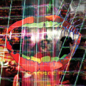 Animal Collective To Release DVD With New Album