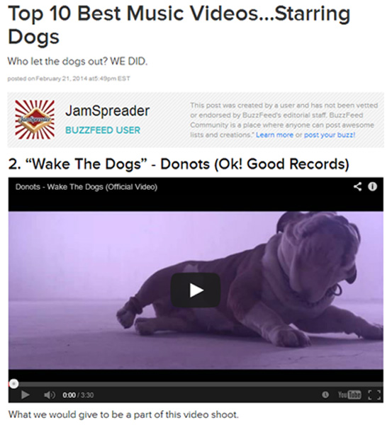 Donots Wake The Dogs Music Video BuzzFeed