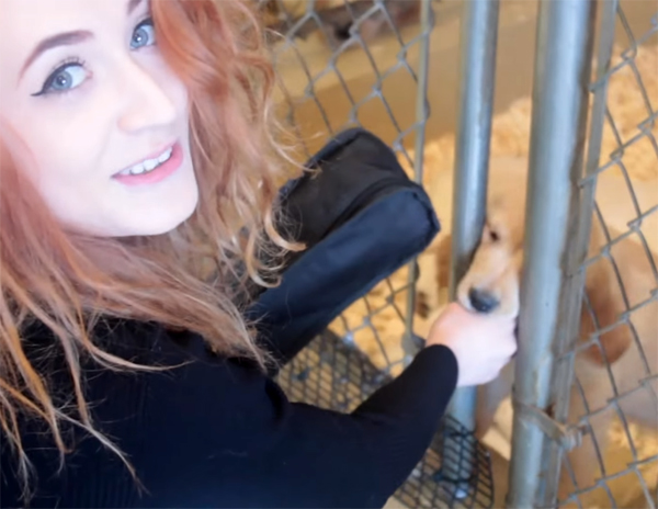 """Janet Devlin Sings """"Happy Holidays"""" to Puppies"""